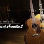 Session Guitarist Strummed Acoustic Crack