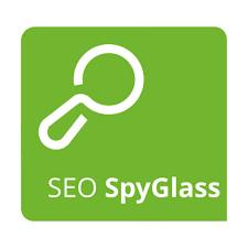 SEO SpyGlass v8.38.11 Crack With Serial Key Latest Version [2021]
